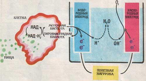 для топливных элементов